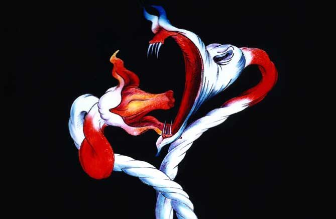 The flowers cell gerald scarfe the flowers cell mightylinksfo